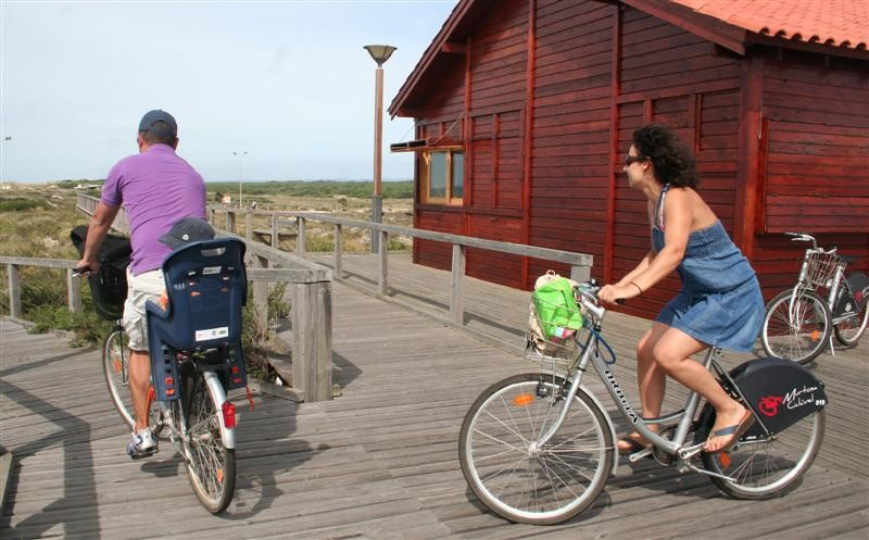 BicicletasMurtosa01 (Medium)